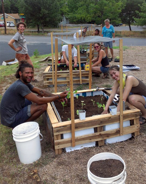 Growing Free Food and Community in Front Yard Farms | Urban Gardens | Unlimited Thinking For Limited Spaces | Urban Gardens | Suburban Land Trusts | Scoop.it