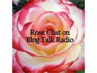 Rose Chat Radio | Annie Haven | Haven Brand | Scoop.it