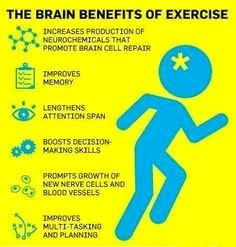 Brain Benefits of Exercise | Fitness and Gym | Scoop.it
