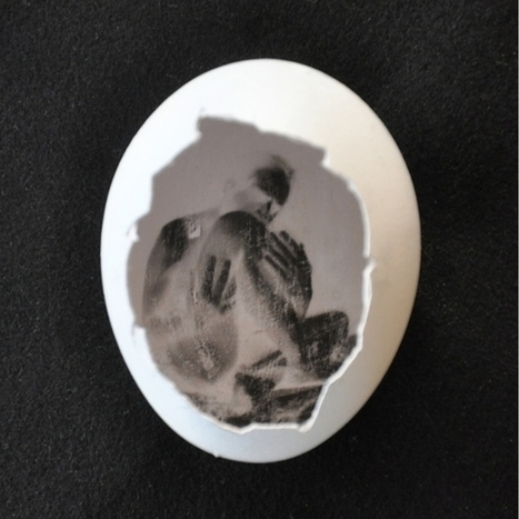 The Pinhegg – My Journey To Build An Egg Pinhole Camera   Excell Inspiring Images   Scoop.it