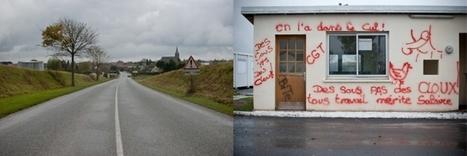 Doux à Graincourt : reportage chez les dindons de la farce (1/2) | DailyNord | Social Life's moods | Scoop.it