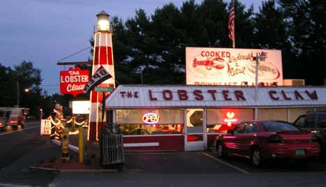 Sea Salt Lobster - Wholesale Maine Lobster - Lobster Food Truck | Select a Maine Lobster Wholesaler Committed to High Quality | Scoop.it