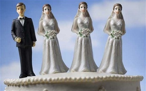 Yes, We've Opened The Door To Polygamy And Incest: We Just Didn't Want To Admit It Before | News You Can Use - NO PINKSLIME | Scoop.it