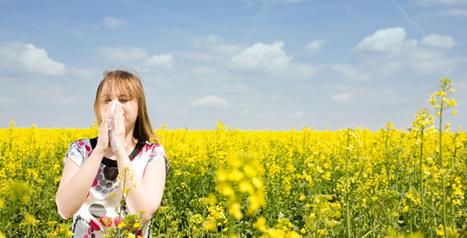 Sondage: Nous avons besoin de votre coup de pouce . | Aromathérapie | Scoop.it
