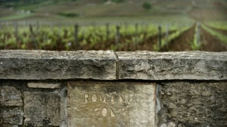 Millions dished out for rare Burgundy at Geneva wine auction | Pinot Post | Scoop.it