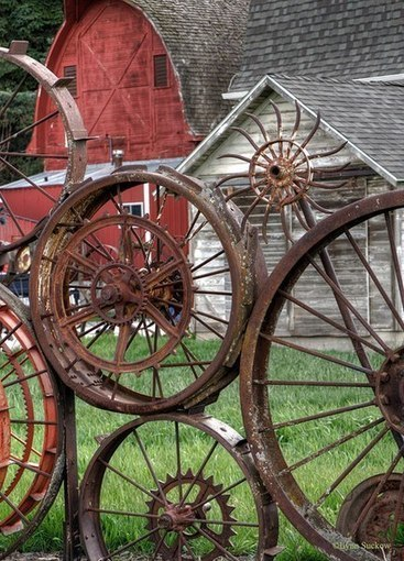 Looking through old wagon wheels | Upcycled Garden Style | Scoop.it