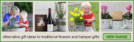 Ideal Flowering Plants for Indoors | Plants Online | Scoop.it