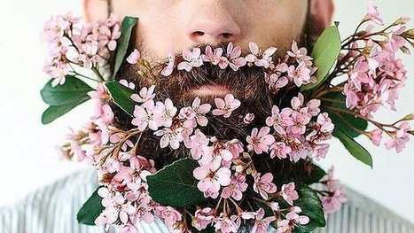 "#Hipsters Trends : The ""Beard gardens' - What the...? 