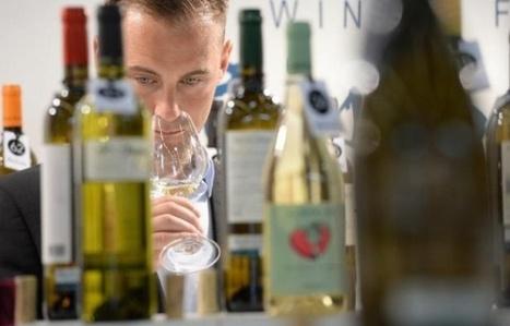 Vins de Bordeaux: Le «très grand» millésime 2015 affiche déjà des hausses de prix de 10 à 20%   Le vin quotidien   Scoop.it