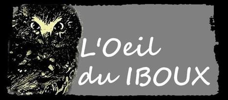 l'oeil du Iboux: histoire de chatte | geekeries by iboux | Scoop.it