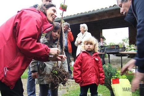 Troc de graines : des espaces autogérés pour faire vivre les semences libres | CaféAnimé | Scoop.it