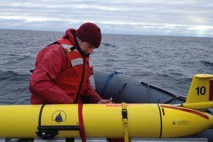 Des baleines suivies en temps réel dans les océans   Mes passions natures   Scoop.it