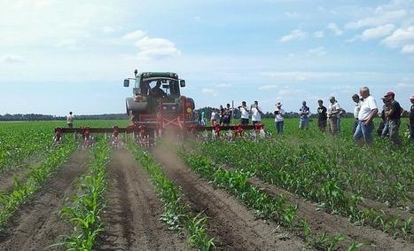Innov'action: Le binage, l'avenir du désherbage... mais pas sans GPS! | Revue de presse : l'agriculture en Aquitaine | Scoop.it
