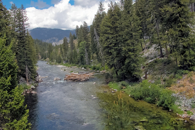 Idaho legislature goes all out not to protect water quality | GarryRogers Biosphere News | Scoop.it