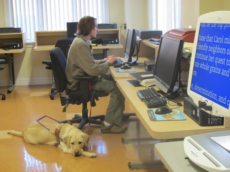 Guiding Eyes for the Blind: Eyes on the Future – An Assistive ... | Disability | Scoop.it