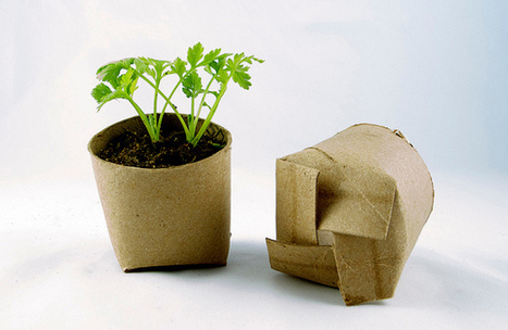 Biodegradable seed starters | Make stuff | Scoop.it