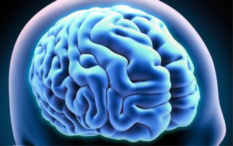 Vitamine D : ses bienfaits sur les cerveaux seniors - Senior Actu | Seniors | Scoop.it