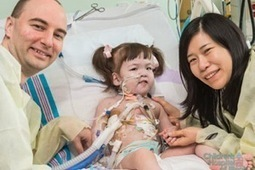 Girl Receives Engineered Trachea Treated With Her Own Stem Cells - Singularity Hub   Tissue Engineering   Scoop.it