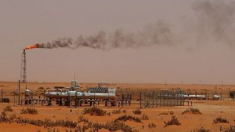 Saudi Arabia agrees plans to move away from oil profits - BBC News | design, systems and sustainability | Scoop.it