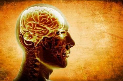 High intelligence linked to reduced risk of schizophrenia | BrainLovers | Scoop.it
