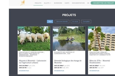 Un portail internet pour la biodiversité montréalaise | Biodiversité & Relations Homme - Nature - Environnement : Un Scoop.it du Muséum de Toulouse | Scoop.it
