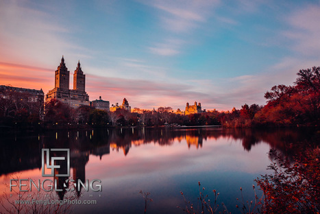 Central Park New York City with the Sony A7R | Bronx News | Scoop.it