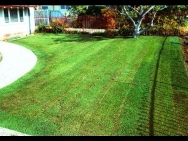 Vital Considerations To Keep In Mind For Your Garden Before Going On A Summer Holiday | Home Improvement | Scoop.it