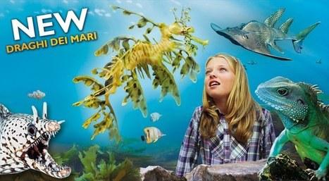 NOVITÀ 2012   Gardaland 2013: biglietti omaggio e ingressi gratis   Scoop.it
