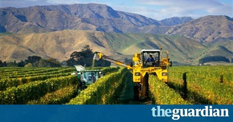 Climate change will threaten wine production, study shows | Viticulture | Scoop.it