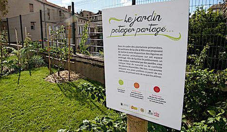 Albi vise l'autosuffisance alimentaire d'ici à 2020 - Wikiagri.fr | Revue | Scoop.it