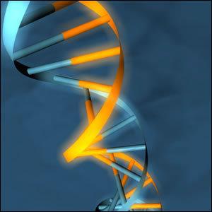 XNA: molecole sintetiche per capire la vita | Med News | Scoop.it