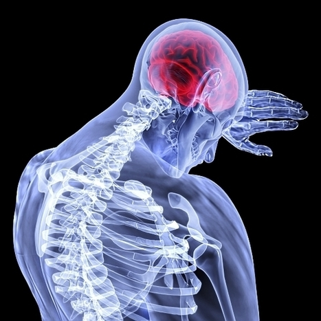 Concussion Definition, Symptoms, & Diagnosis | Brain Injury Attorney | Brain Injury | Scoop.it