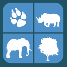 UNODC adopts new 'Global Programme for Combating Wildlife and Forest Crime' | Endangered Wildlife | Scoop.it