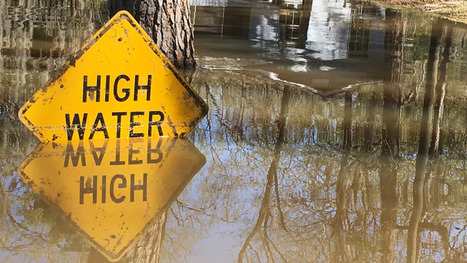 Record rains are sending untreated sewage into U.S. cities #disease #pollution #toxic | Messenger for mother Earth | Scoop.it