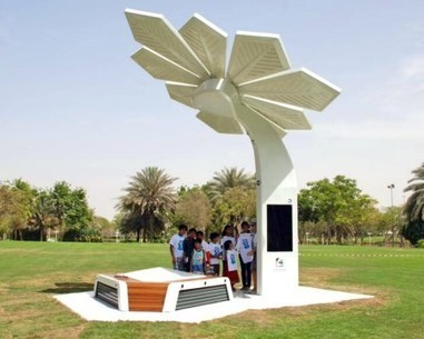 "Are ""Palm Trees"" The Next Step In Solar Energy's Evolution? 