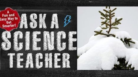 Ask a science teacher: Why is snow white, and where does its color go when the ... - Fox News | CLOVER ENTERPRISES ''THE ENTERTAINMENT OF CHOICE'' | Scoop.it