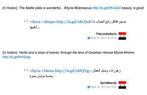 Twitter Trolling as Propaganda Tactic: Bahrain and Syria by Jillian C. York | Twit4D | Scoop.it