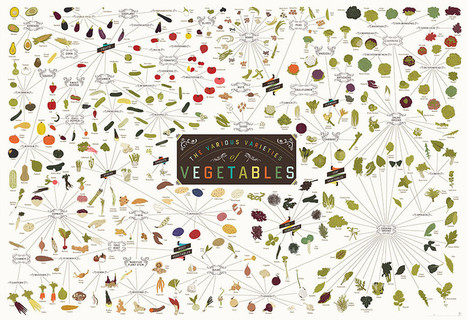 Pop Chart Lab — The Various Varieties of Vegetables | Plant Biology Teaching Resources (Higher Education) | Scoop.it