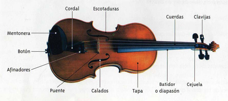 Partes del violin | Música | Scoop.it
