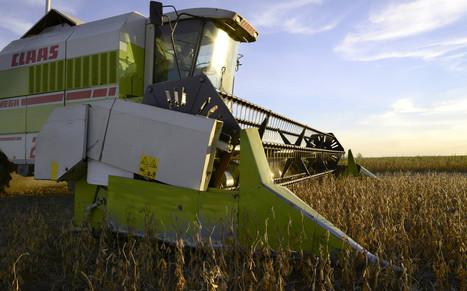Idle Argentine soy-crushers ramp up as Macri ending crop logjam | Grain du Coteau : News ( corn maize ethanol DDG soybean soymeal wheat livestock beef pigs canadian dollar) | Scoop.it