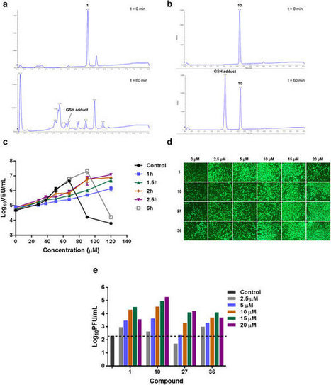 First-in-class small molecule potentiators of cancer virotherapy | Immunology and Biotherapies | Scoop.it