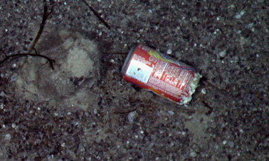 Litter found in deepsea survey of one of Earth's final unexplored realms | Geography Bits | Scoop.it