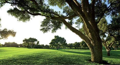 Andalousie: Valderrama Golf Club | DMGolf | Tourisme en Espagne - paused topic | Scoop.it