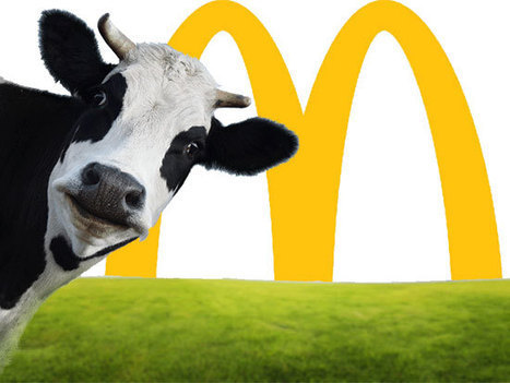 Exclusive: Inside McDonald's quest for sustainable beef | Food & Sustainability | Scoop.it
