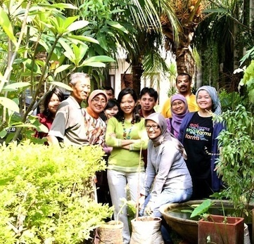 Urban farming at home in South Jakarta, Indonesia - City Farmer News   Urban Food Security   Scoop.it