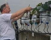 Anteprima di God save the Green, il film sugli orti urbani nel mondo ... | SOS TERRA:solidando | Scoop.it