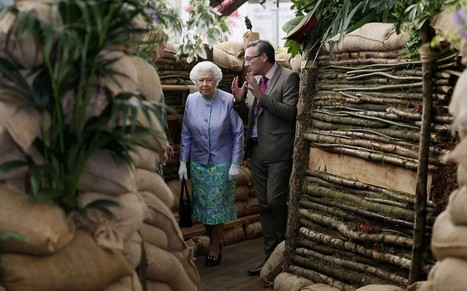 Chelsea Flower Show 2014: live coverage - Telegraph.co.uk | What's Growing On | Scoop.it