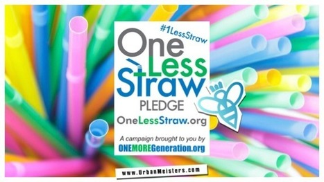 [NextGen Eco Initiative] Go Green with #1LessStraw   Thinking Outside the Box   Scoop.it