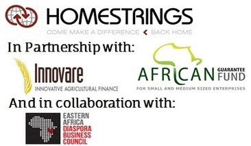 Homestrings Webinar - Investor Series: Choosing the Right Investment for You   Investing in East Africa   Scoop.it