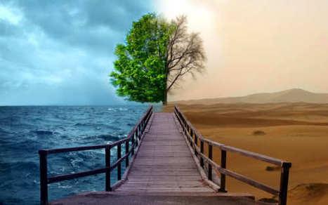 Leaders: A Climate forChange   #BetterLeadership   Scoop.it